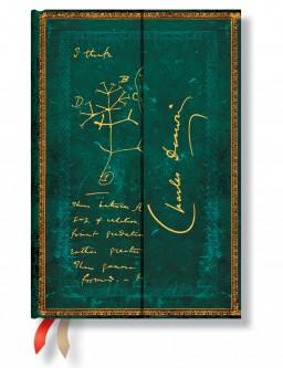 2628-0 – 18-Month – Mini – 2015 Darwin, Tree of Life