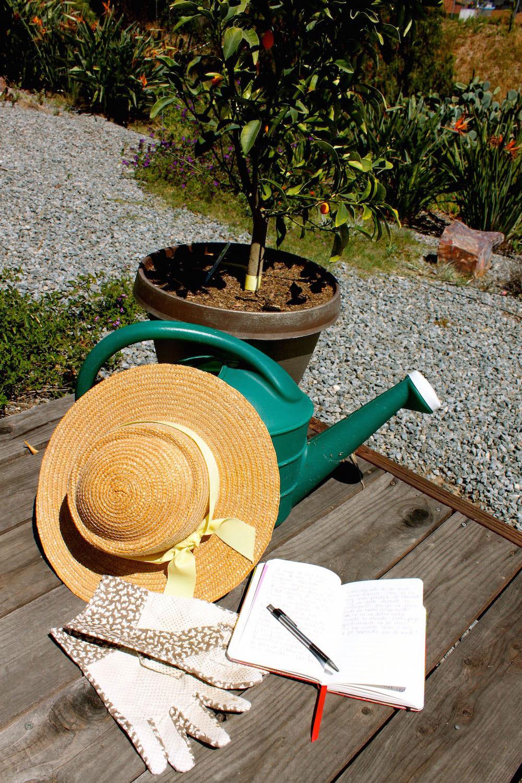 Paperblanks-gardening-2