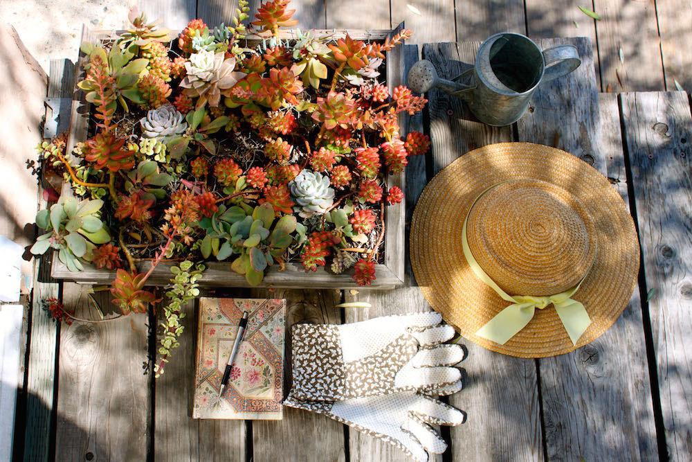 Paperblanks-gardening-3