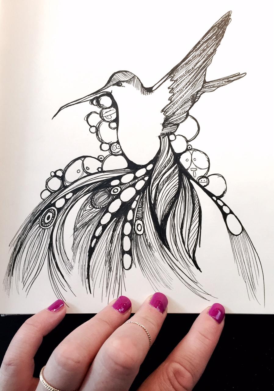 pausedoodle-hummingbird