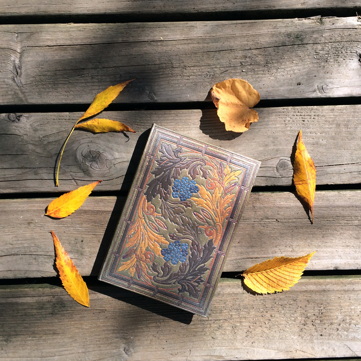 autumnsymphony_fall